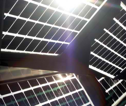 Lotus solar modules credit: ecoSolargy