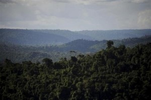 An overview of the Carajas National Forest in the Amazon Basin where Brazil's Companhia Vale do Rio Doce mines iron ore