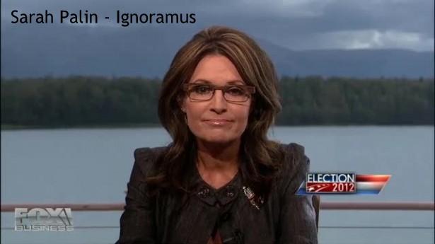 "Sarah Palin ""Comments"" on Tesla Motors"