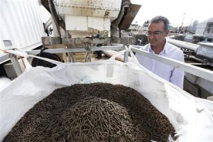 Applied CleanTech Chief Executive Aharon stands next to pellets made from cellulose fibers picked out from the firm's sewage mining system in northern Israel