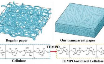NanostructuredPaper_nl404101p-Fig1bandc_630m