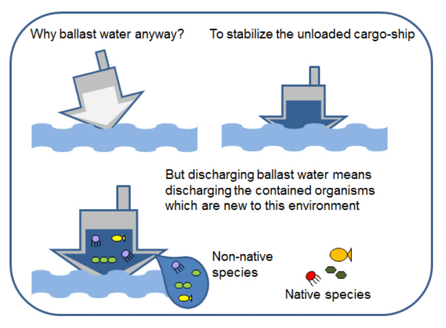 Ballast Water Management For Ocean Biodiversity